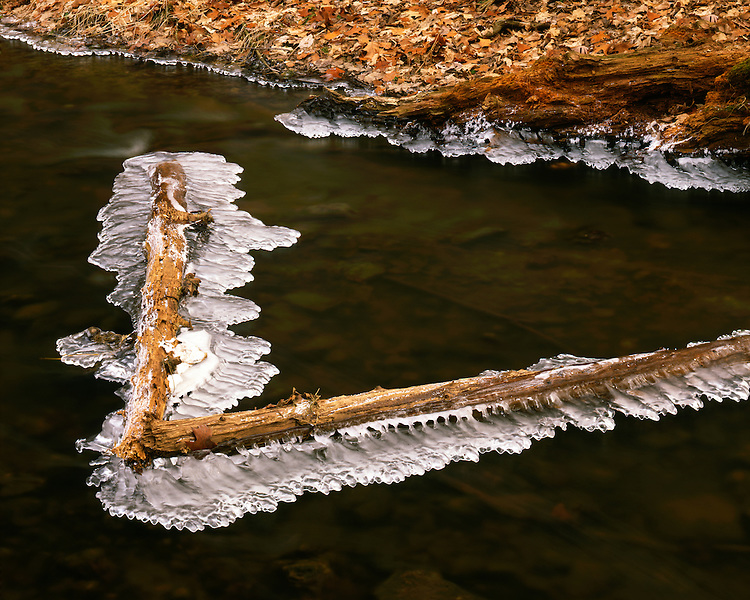 Ice formations on a stream at The Morton Arboretum; Lisle, IL