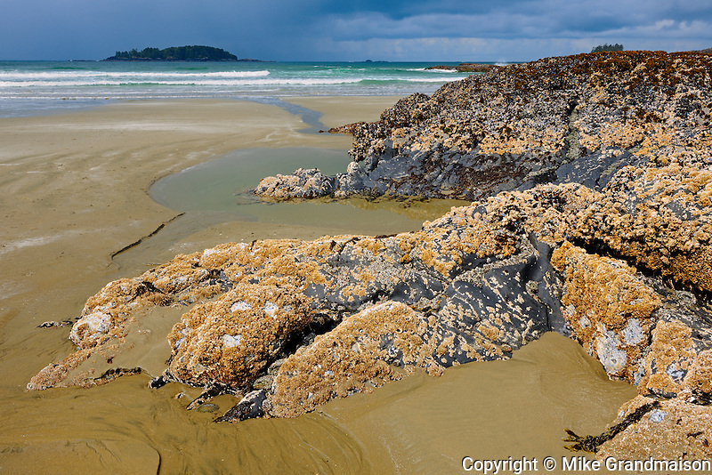 Pacific Ocean at low tide at Long Beach<br /> Pacific Rim National Park<br /> British Columbia<br /> Canada