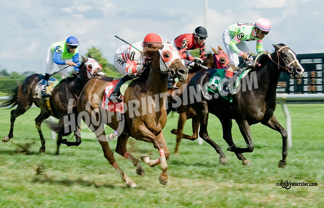 Lion Down By Me winning at Delaware Park on 9/1/14