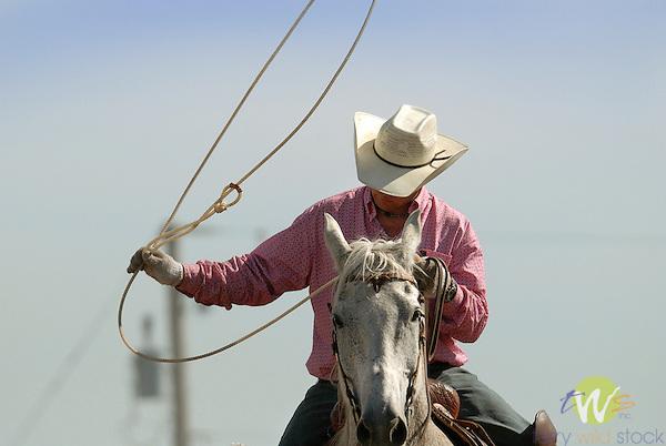 Rodeo Calf Roper
