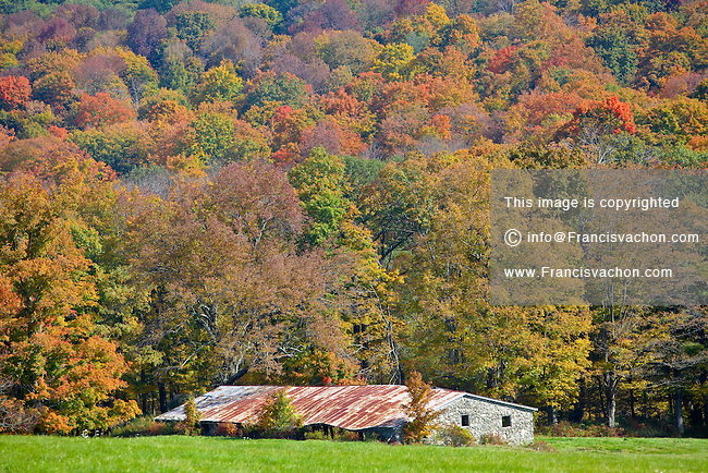 An abandoned barn is pictured in front of a colorful fall landscape in Berkshire county' Mount Everett State Reservation, Massachusetts Wednesday October 2, 2013.