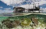 Split level of a shallow coral reef and house on stilts. North Raja Ampat, West Papua, Indonesia
