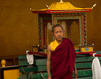 A young Buddhist monk preparing the procession palanquin for the Losar ceremony at a monastery in the Himalayan foothills of Sikkim, India.