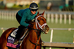 October 28, 2019 : Breeders' Cup Juvenile Fillies Turf entrant Sweet Melania, trained by Todd A. Pletcher, exercises in preparation for the Breeders' Cup World Championships at Santa Anita Park in Arcadia, California on October 28, 2019. John Voorhees/Eclipse Sportswire/Breeders' Cup/CSM