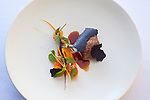 lamb, carrots and summer botanicals