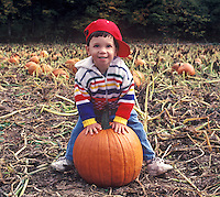 A young boy sitting on a pumpkin in a pumpkin patch.