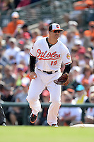 Baltimore Orioles first baseman Chris Davis (19) during a spring training game against the Philadelphia Phillies on March 7, 2014 at Ed Smith Stadium in Sarasota, Florida.  Baltimore defeated Philadelphia 15-4.  (Mike Janes/Four Seam Images)