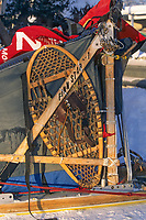Dog sled, Yukon Quest 1000 mile race from Fairbanks Alaska to Whitehorse, Canada.