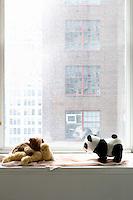Teddy bears on window sill