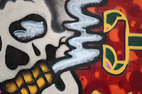Amazing graffiti in wynwood walls, miami - one of the hippest neighborhoods in the country
