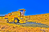 Combine Harvester on Royal Deeside Aberdeenshire, where in addition to farming there is a wide variety of terrain including  magnificient mountain, castles, rivers, lochs and glens.<br />