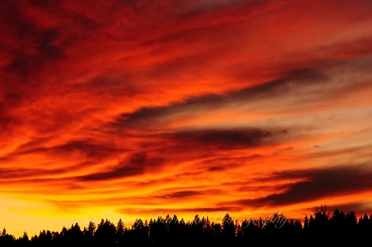 &quot;BIG SKY ON FIRE&quot;<br /> <br /> Fire red montana sunset in the Kootenai National Forest