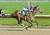 Mariposa Rose winning at Delaware Park on 5/31/11