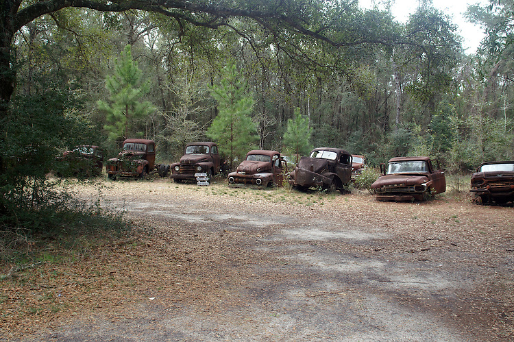 Row of trucks left to rust away