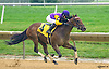 Rally With Class winning at Delaware Park on 10/1/16