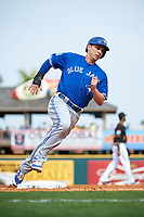 Toronto Blue Jays second baseman Andy Burns (1) running the bases during a Spring Training game against the Pittsburgh Pirates on March 3, 2016 at McKechnie Field in Bradenton, Florida.  Toronto defeated Pittsburgh 10-8.  (Mike Janes/Four Seam Images)