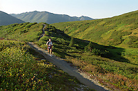 A racer runs near the 2,500-foot summit of Resurrection Pass in the the Kenai Mountains, about 30 miles into the Resurrection Pass Trail 100-Miler ultramarathon race in 2004. The course requires runners to climb - and descend - about a mile of vertical elevation through the Chugach National Forest between Cooper Landing and Hope, Alaska.