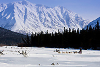 Chris Adkins (son of the first veterinarian on the Iditarod Terry Adkins) runs his team out of the Rohn checkpoint at the confluence of the Tatina and the South Fork of the Kuskokwim Rivers during the 2010 Iditarod, Interior Alaska