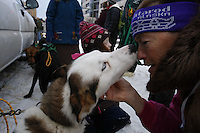 Saturday March 6 , 2010    Spectator Pat Likos (R) gets a kiss from a Quinn Iten dog in the staging area during the ceremonial start of the 2010 Iditarod in Anchorage , Alaska