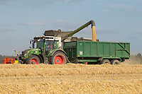 17.7.2020 Harvesting Winter barley on heath land in Lincolnshire <br />  ©Tim Scrivener Photographer 07850 303986<br />      ....Covering Agriculture In The UK.