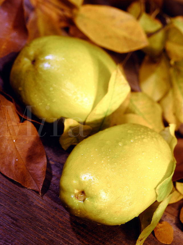 Fresh Quince on wood