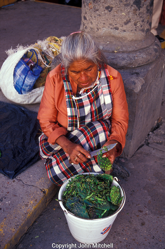 Elderly indigenous woman scraping needles off a Nopal (prickly pear) cactus in the market in San Miguel de Allende, Guanajuato state, Mexico