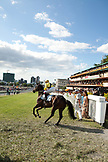 MAURITIUS; Port Louis; an international horse race draws thousands at Champ de Mars Race Cource; International Jockey Day