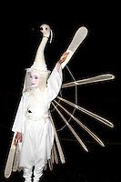 Swan costume