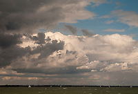 Gathering cumulus storm clouds at sea.