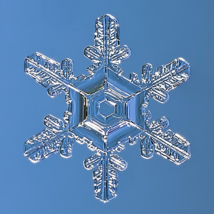 Snowflake Ratana - Macro photograph of a Stellar Plate Snowflake