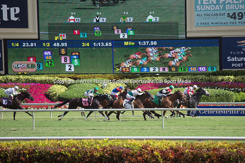 January 02, 2016: Scenes from. Gulfstream Park, Hallandale Beach (FL). Arron Haggart/ESW/CSM