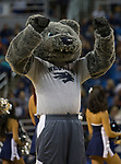 Nevada mascot during the second half of an NCAA college basketball game against California Baptist in Reno, Nev., Monday, Nov. 19, 2018. (AP Photo/Tom R. Smedes)