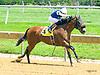 Cousin Stephen winning at Delaware Park on 6/29/17