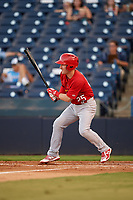Palm Beach Cardinals Casey Turgeon (25) follows through on a swing during a game against the Tampa Yankees on July 25, 2017 at George M. Steinbrenner Field in Tampa, Florida.  Tampa defeated Palm beach 7-6.  (Mike Janes/Four Seam Images)