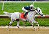 Litle Bit winning before at Delaware Park on 5/24/12