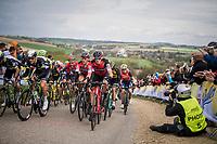 compact peloton with Greg Van Avermaet (BEL/BMC) ascends the Gulperenberg 1 last time<br /> <br /> 52nd Amstel Gold Race (1.UWT)<br /> 1 Day Race: Maastricht &rsaquo; Berg en Terblijt (264km)