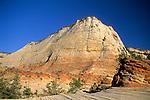 Checkerboard Mesa, along the Zion - Mt. Carmel Highway, Zion National Park, UTAH