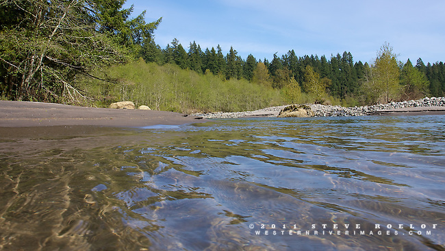The blue sky reflects on the water's surface near a beach and alder grove on a side channel of the Sandy River, Oregon.