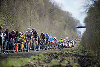 In his very last race as a pro-rider, Yaroslav Popovych (UKR/Trek-Segafredo) leads the race into the infamous sector 18: Trou&eacute;e d'Arenberg - Wallers Forest (2.4km)<br /> <br /> 114th Paris-Roubaix 2016