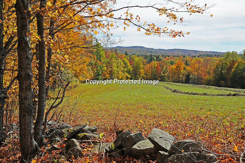 View of Distant Hills in Colorful Foliage during Fall Season in Rural Alstead, New Hampshire USA