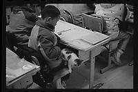 Jeminay County, Xinjiang Uygur Autonomous Region, China - A stray cat wanders into a classroom to keep warm, October 2019.