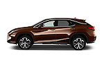 Car Driver side profile view of a 2016 Lexus RX Executive 5 Door SUV Side View