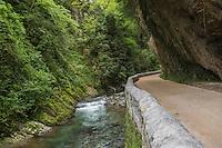 Europe, France, Aquitaine, Pyrénées-Atlantiques, Béarn , Vallée d'Aspe, Lourdios-Ichère: Gorges de Lourdios // Europe, France, Aquitaine, Pyrenees Atlantiques, Bearn, Aspe valley, Lourdios-Ichère