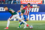David Garcia, and Juan Fuentes competes for the ball with Angel Correa of Atletico de Madrid during the match of La Liga between  Atletico de Madrid and Club Atletico Osasuna at Vicente Calderon  Stadium  in Madrid, Spain. April 15, 2017. (ALTERPHOTOS / Rodrigo Jimenez)