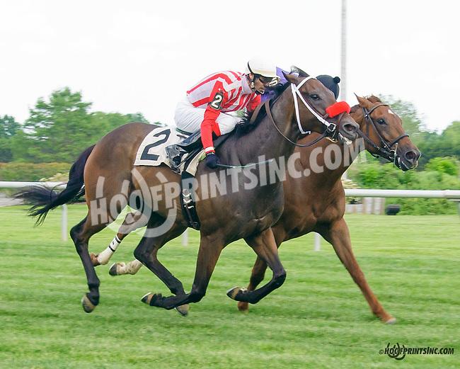 Back Away winning at Delaware Park on 5/30/15