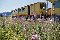 Europe/France/Languedoc-Roussillon/66/Pyrénées-Orientales/Cerdagne:Mont-Louis:  La voie ferrée du Train jaune de Cerdagne et le  sommet du Cambre d'Aze (2750m)<br />  Le Train jaune de Cerdagne  est appelé le Train Jaune ou le Canari, car les véhicules arborent les couleurs catalanes, le jaune et le rouge