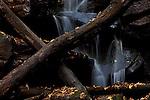 Europa, DEU, Deutschland, Baden-Wuerttemberg, Odenwald, Neckargerach , Naturpark Neckartal-Odenwald, Herbst, Margarethenschlucht, Wasserfall, Kategorien und Themen, Natur, Umwelt, Landschaft, Jahreszeiten, Stimmungen, Landschaftsfotografie, Landschaften, Landschaftsphoto, Landschaftsphotographie, Tourismus, Touristik, Touristisch, Touristisches, Urlaub, Reisen, Reisen, Ferien, Urlaubsreise, Freizeit, Reise, Reiseziele, Ferienziele<br /> <br /> [Fuer die Nutzung gelten die jeweils gueltigen Allgemeinen Liefer-und Geschaeftsbedingungen. Nutzung nur gegen Verwendungsmeldung und Nachweis. Download der AGB unter http://www.image-box.com oder werden auf Anfrage zugesendet. Freigabe ist vorher erforderlich. Jede Nutzung des Fotos ist honorarpflichtig gemaess derzeit gueltiger MFM Liste - Kontakt, Uwe Schmid-Fotografie, Duisburg, Tel. (+49).2065.677997, archiv@image-box.com, www.image-box.com]