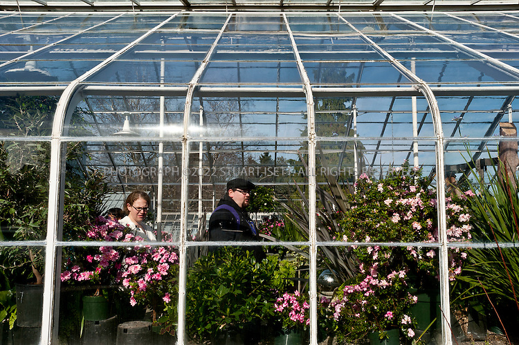 2/20/2011--Seattle, WA, USA..The conservatory in Volunteer Park (1247 15th Avenue East, 206-684-4075, www.seattle.gov/parks/park_detail.asp?ID=399), a ten-minute cab or bus ride from downtown Seattle at the north end of Capitol Hill, has gardens designed a century ago by the Olmsted Brothers, a conservatory bursting with tropical foliage and flowers, and a squat brick water tower that you can ascend for terrific views of the city below and the mountains and water beyond.  Rain or shine, it's the ideal place for spring orientation...©2011 Stuart Isett. All rights reserved.