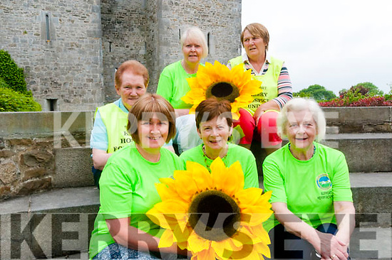 Sunflower Day: Pictured to announce the upcoming Sunflower Day in aid of thge hospice movement to be held in Listowel on Friday 8th June were in front Eileen Sheehy, Mary O'Connor & Theresa Hannon, Back : Sr. Margaret, Helen duggan & Kay Hanley.