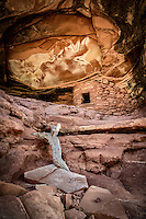 The Fallen Roof Ruin is situated in a remote canyon on Utah's Cedar Mesa.